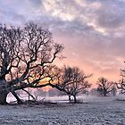 Winter Sunrise by Simon Pattinson