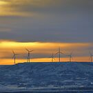 Wind Energy at Sunset by Shiva77