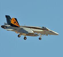 F/A-18E Super Hornet by Eleu Tabares