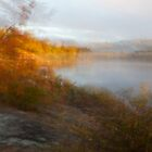 Blurred Vision by Rick McKee