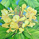 Yellow Ginger Watercolour by joeyartist