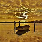 On golden pond by Len  Gunther