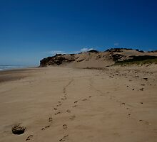 Sand Dune At Darby River by GP1746