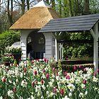 The Wishing Well - Keukenhof Gardens by kathrynsgallery