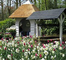The Wishing Well - Keukenhof Gardens by kathrynsgallery