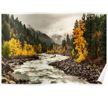 Flowing through Autumn Poster