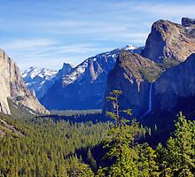 Yosemite Valley by Harry Oldmeadow