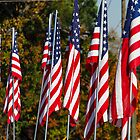 American Flags in Autumn by dbvirago