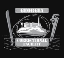 Georgia Correctional Facility by fsmooth