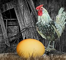 Which came First the Chicken or the Egg? by Randall Nyhof