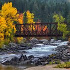 Old Pipeline Bridge by Mark Kiver
