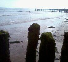 beach scene by kimmcgauley