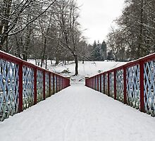 Queen's Park Bridge in the Winter Freeze by Sarah Williams
