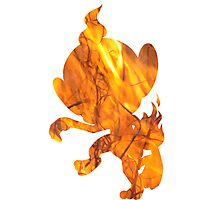 Chimchar used Flame Wheel Photographic Print