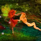 Dancing Auroras - Orange Fairy by Aimee Stewart