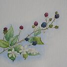 Blackberries by Geraldine M Leahy