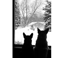 Snow Day Entertainment ~ Photographic Print
