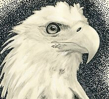 Eagle I by Kashmere1646