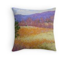 Dry grass in February Throw Pillow