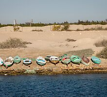 Fishing Boats on the Banks of the Suez Canal by Joshua McDonough