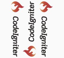 CodeIgniter ×3 by csyz ★ $1.49 stickers