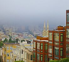 Telegraph Hill View by David Denny