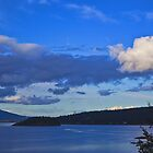 Smokehouse Bay by Wendi Donaldson