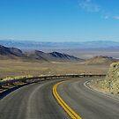 Highway 844, Nevada by Claudio Del Luongo