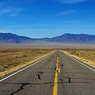 Highway through vast empty spaces, Nevada by Claudio Del Luongo
