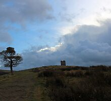 Cage at Lyme Park by rebbakerphoto