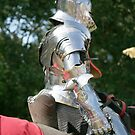 Medieval knight in shining armour by Maxine Collins