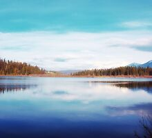 Rainy Lake, Mt. 1 by Janie Lynn Johnson