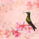 Primavera Rosa by Krys Bailey