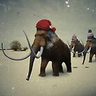 Woolly Hat Mammoth by Matt West