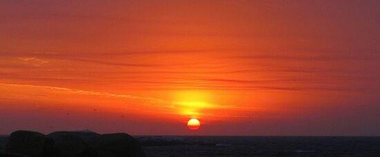 bushfire sunrise, jan 2013. eastcoast tasmania  by tim buckley | bodhiimages