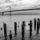 Bay Bridge with Wooden Piles by James Watkins