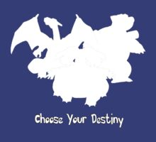 Choose Your Destiny T-Shirt