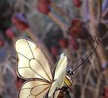 Iron Butterfly by Karen Carlisle