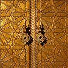 The Golden Door by Robyn Carter