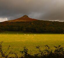 Roseberry Topping by Paul Bettison