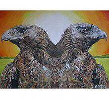 Twin Eagles, 2000 (colour pencil) Photographic Print