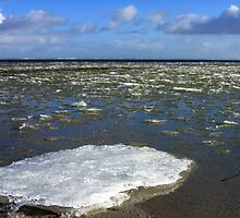 Melting Ice by Jo Nijenhuis
