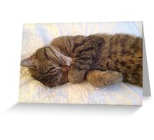 Butter wouldn't melt! Greeting Card