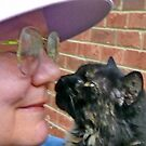 Miss Molly and Me by Vivian Eagleson