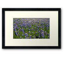 You Picked Me Framed Print