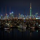 Auckland at night by davidprentice