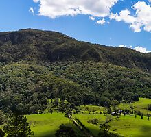 Lamington National Park by ericrmc