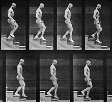 Man descending stairs, from 'Animal Locomotion', 1887 by Bridgeman Art Library