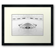 The Mother Ship © Framed Print