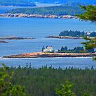 Isolated In Maine by mcstory